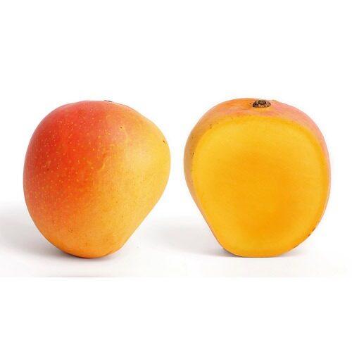 African Mango Super Fruit Diet Review