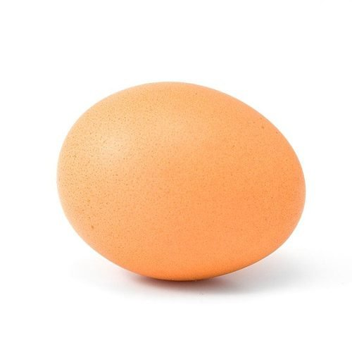 Everything You Need To Know About Eggs